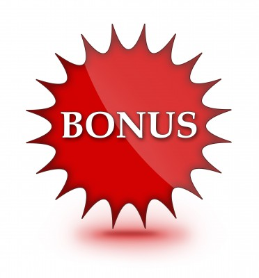 Bonus - Emergence Success Solutions
