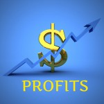 5 Simple Steps To Boost Business Profits - Emergence Success Solutions